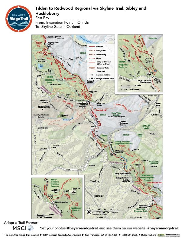 Tilden to Redwood Regional via Skyline Trail, Sibley and Huckleberry