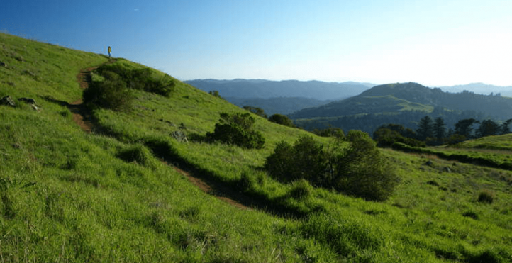 View of the trail in Russian Ridge Open Space Preserve