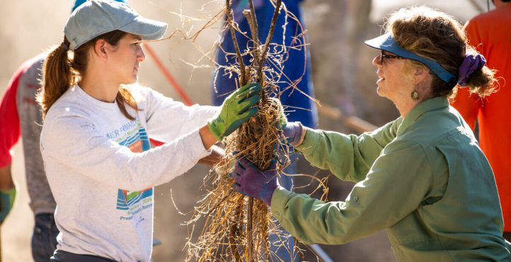 Volunteers move branches on Ridge Trail day