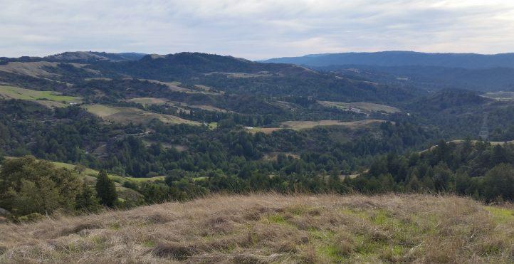 View of Upper La Honda