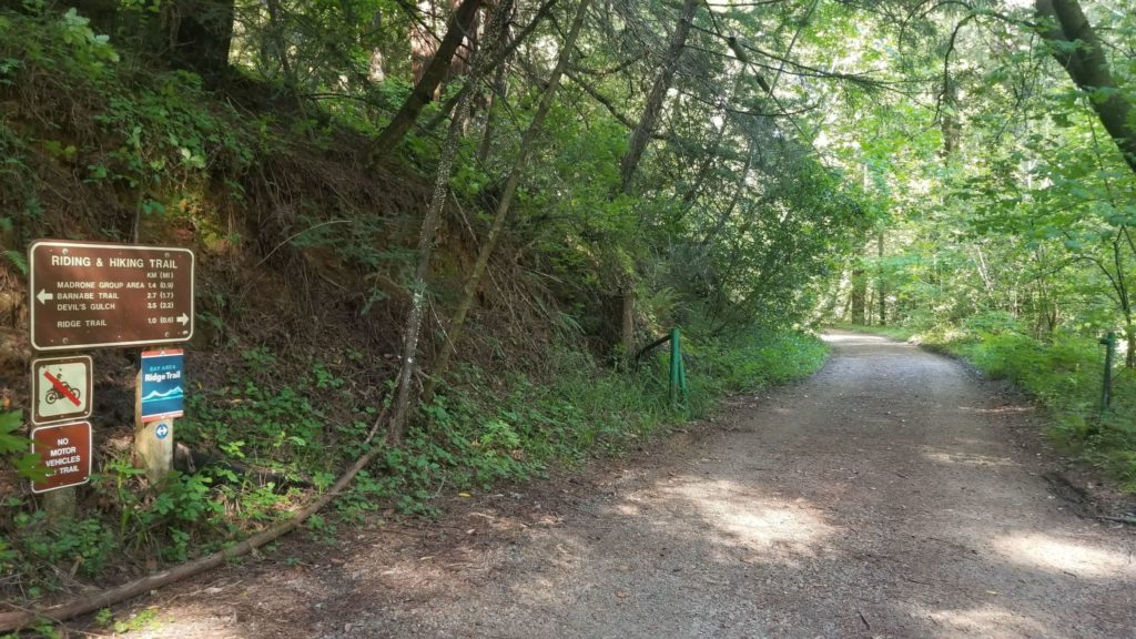 Trail with signs and tree coverage
