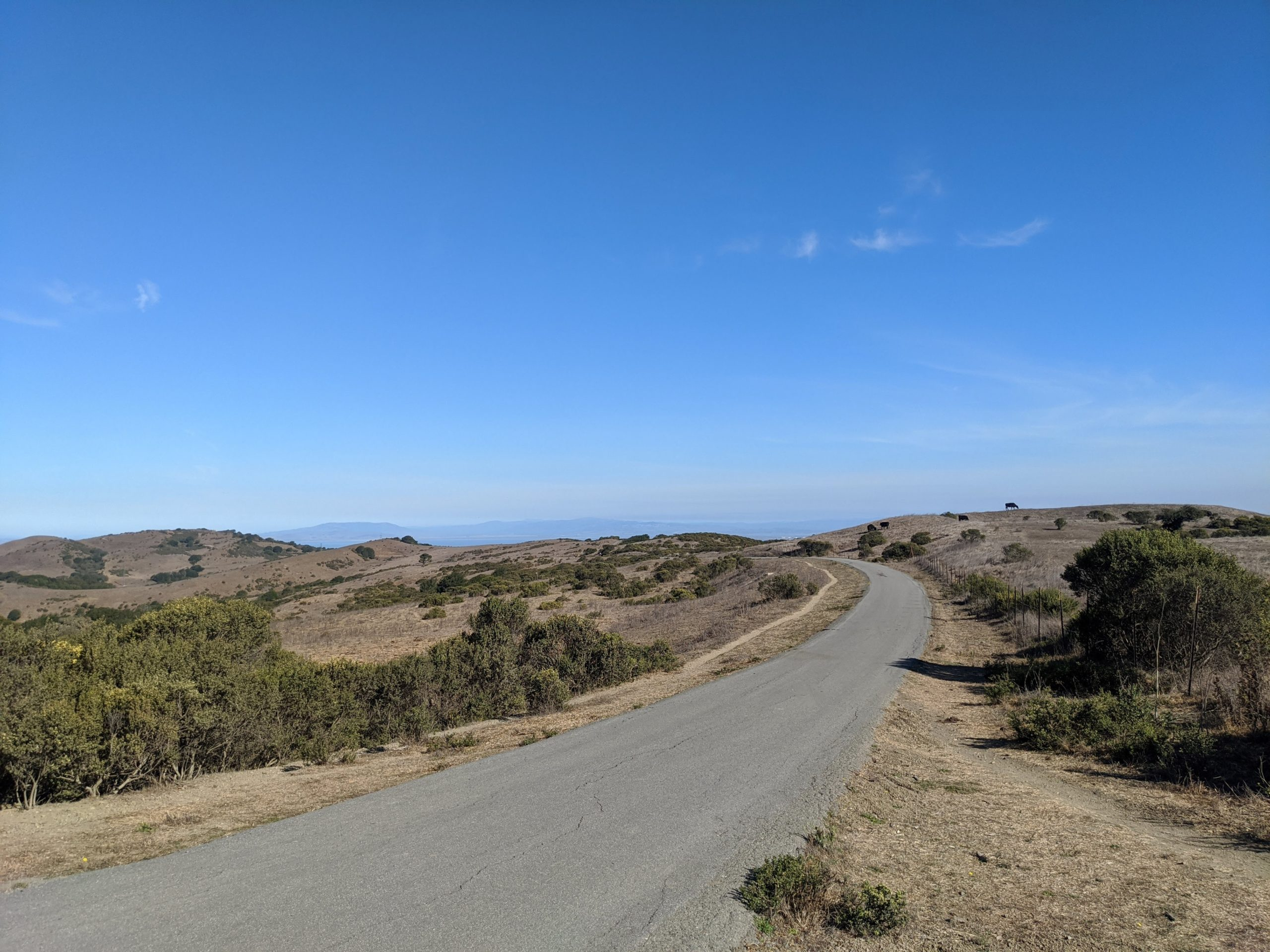 path through grassy hilly meadow