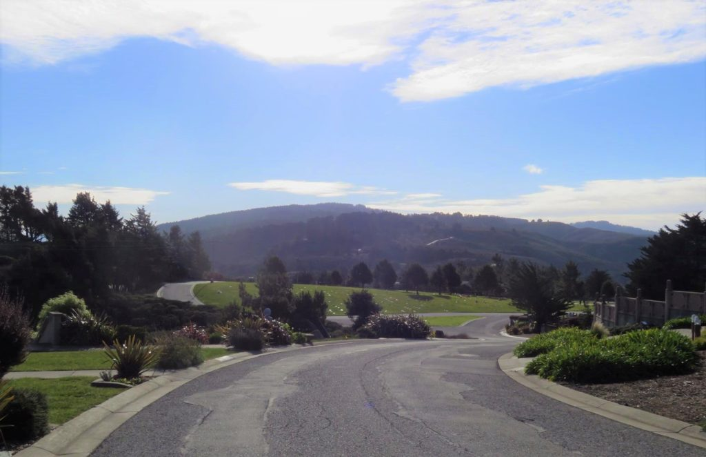 road with hills behind