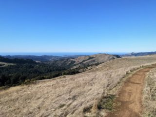 All of us at the Ridge Trail wish you and yours a safe, healthy and happy holiday! ❄️🌲❤️ Photo: Russian Ridge Preserve #bayarearidgetrail #trails #outdoors #nature #holidays #bayarea #winter