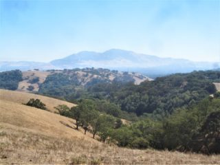 Arlene is the most recent person to finish the Ridge Trail Challenge. Congratulations Arlene and thank you for sharing these awesome photos of your adventures with us! 360० views - and amazing prizes - await you! Register now at the link in our bio. 🌄 #ridgetrailchallenge #bayarearidgetrail 📷: View of Mt. Diablo from Almond Ranch in Martinez, Arlene Tsang
