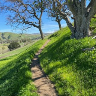 "Happy St. Patrick's Day! You can pretend you're in Ireland for a day by visiting the many green hills along the Ridge Trail this spring. ☘️  ""Where is this photo?"" you might ask... Sign up for our e-news and you'll find out in a special announcement on Friday!   Link to sign up for e-news in bio.   Photo: Phil Bellman"