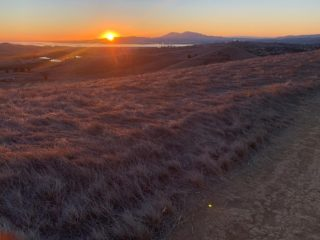 Together we've built 390 of 550 total Ridge Trail miles, but we aren't finished yet! Make your gift before the end of 2020 and be a part of the team that builds the trail. Link to help complete the trail in bio! 🌄 Photo: Vallejo/Benicia Buffer, @marblebluevinyl #bayarearidgetrail #trails #outdoors #nature #hike #bike #equestrian #bayarea