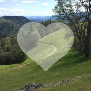 Happy Valentine's Day! There are lots of ways to show love for the Ridge Trail - become a member, sign up for our e-news to stay in the loop with us, or just go out and enjoy it! Links to get involved in our bio.❤️❤️ #bayarearidgetrail #trails #outdoors #nature #hiking #biking #equestrian #bayarea