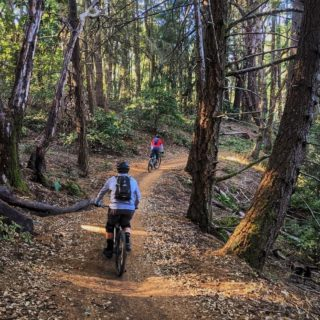 ICYMI: a new Ridge Trail section is open! Travel the Ridge Trail through El Corte de Madera Creek Preserve, near Woodside in San Mateo County. Get a sneak peek of the trail at the link in our bio!